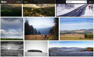 Flickr - thumbnails - detail